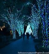 Atlanta-Botanical-Gardens-Garden-Lights-Holiday-Nights-0111_wm1.jpg