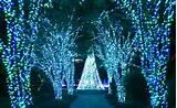 Atlanta Botanical Gardens – Garden Lights, Holiday Nights
