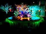 garden holiday lights at the atlanta botanical garden with over