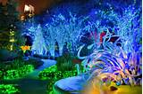 The Atlanta Botanical Garden Holiday Lights