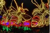 Atlanta Garden Lights Atlanta Atlanta Botanical Garden Garden Traveler ...