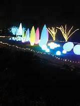 Atlanta Botanical Garden-Garden Lights 2011
