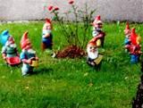 file 7 garden gnomes jpg