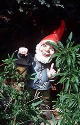 garden gnome q1g5 jpg 159161 byte gartenzwerg bild