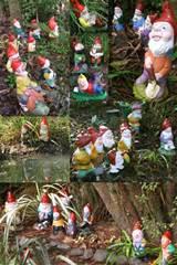 Regarding Garden Gnomes