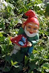 garden gnome 9tq jpg 158909 byte