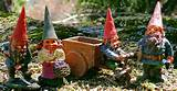 garden gnomes on the grassy knoll