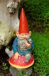 Gnomes are a cute addition to the garden and also a good-luck charm.