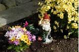 cottage gardening gnome
