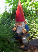 collecting gnomes more than just garden ornaments