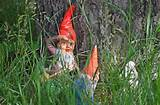 What Will Archaeologists of the Future Think of Garden Gnomes?