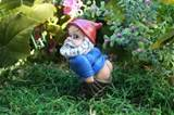 mooning gnome funny rude custom garden gnome 99 99