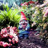 If you need a zombie gnome or a survivor gnome — and let's be ...
