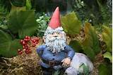 Garden Gnomes For Sale Cute Lawn Gnome is Perfect by PhenomeGNOME, $49 ...