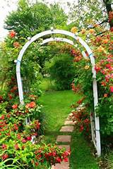 ... garden path and arch with climbing rose plant, charming garden design