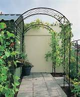Garden Design ~ Designing with arches