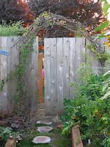 ve always wanted an arched trellis entry into my garden there a