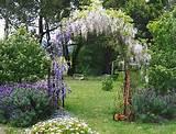 garden arch.. Mmm wisteria...
