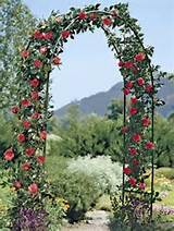 white garden wedding arbor arch wedding arches home garden yard garden ...