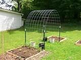 DIY garden arch idea 2