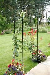 Metal Garden Arch.