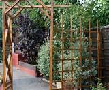 Garden Arch and Trellis
