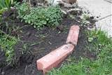 gardening how to put in brick edging