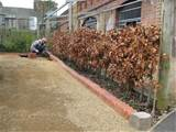 Installing new brick edging
