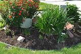 diy projects how to install plastic landscape edging