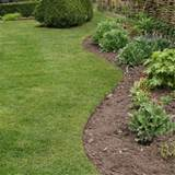 Tips on How to Create a Low Maintenance Garden