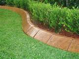ideas plants for lawn edging elevated lawn decorative landscape curve