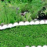 Garden edging ideas for your garden