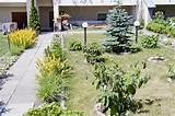garden edging materials