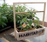 creating habitat one garden at a time