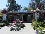 My tour of Western Garden Nursery – Pleasanton, CA