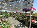 my tour of western garden nursery pleasanton ca