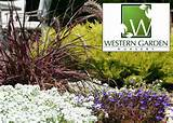 Half Off at Western Garden Nursery