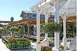 Armstrong Garden Centers, Morena - San Diego