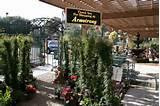 Armstrong Garden Centers, Thousand Oaks