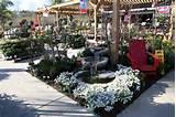 Armstrong Garden Centers, Encinitas