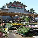 welcome to armstrong garden centers