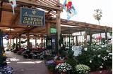 Home Armstrong Garden Centers, Glendale