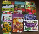 Free Advices and Ideas Garden Nursery Catalogs
