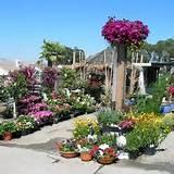 Western Garden Nursery, Pleasanton, CA