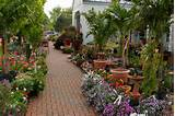 savings about map printable coupons for this location gardening coupon ...