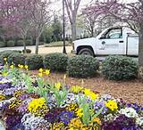 landscape design installation and maintenance services