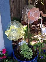 plate and saucer garden flowers