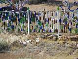 bottle fence in new mexico photo by norbert lazar the phantom gardener
