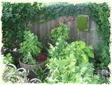This garden had lots of framed moss and succulents. The arch of clay ...