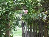 Garden Art & Craft Ideas